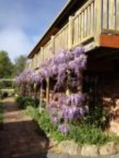 Wisteria Lodge - Wisteria Lodge BnB-Holiday Unit on Tamar River - Dilston - rentals