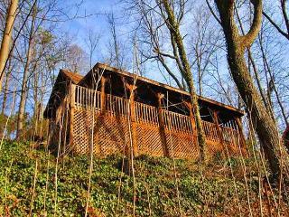 1082 Black Bear Ridge - Gatlinburg vacation rentals