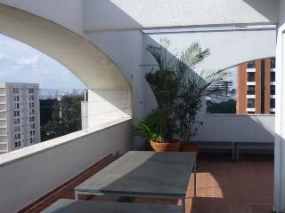 Pinheiros Oscar Freire - State of Sao Paulo vacation rentals