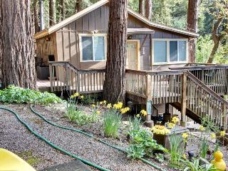 Home w/jungle gym, deck & outdoor firepit, pet friendly - Felton vacation rentals
