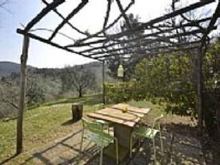Casa del Brigante D - Image 1 - Montaione - rentals