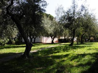 Villa close to Adriatic sea - Francavilla Al Mare vacation rentals