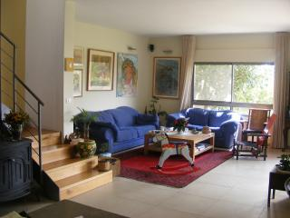 Beautiful house, magical garden, rural area - Givat Ada vacation rentals