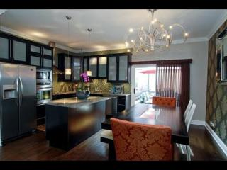 Amazing Luxury Townhouse located in Chicago loop , stunning , 100% verified photos - Chicago vacation rentals