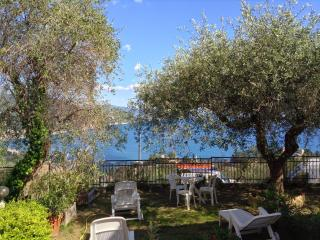 Andromeda Villa, Breathtaking view on Rapallo gulf - Rapallo vacation rentals