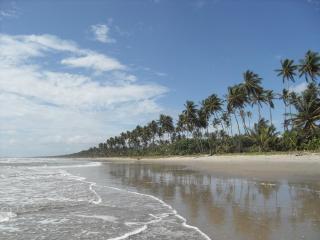 Caribbean Beachcomber's Paradise - Matura vacation rentals