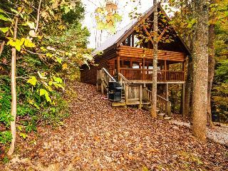 Honey Bear...2BR 2BA Smoky Mtn. Cabin - Sevierville vacation rentals