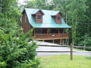 Bear Necessities Cabin  Pet friendly in the Smokys - Sevier County vacation rentals