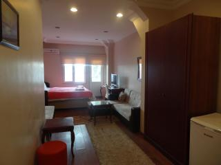 cozy and clean house in a great location - Illinois vacation rentals