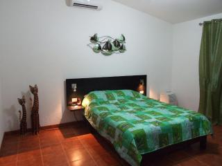 Private house with great nature views, peace and quiet - Tarcoles vacation rentals
