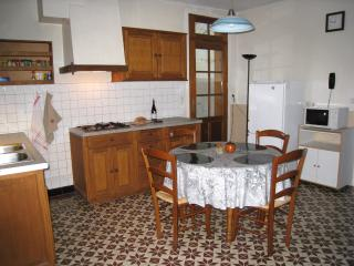 Cozy Village House on the Loir River - Conflans-sur-Anille vacation rentals