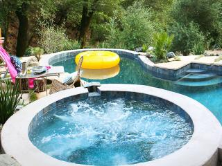 Modern 3br Home W/Pool & Seasonal Creek in Sonoma. - Sonoma County vacation rentals