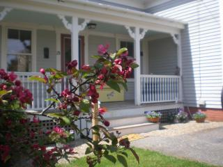 Ladybug House - Mid-Coast and Islands vacation rentals