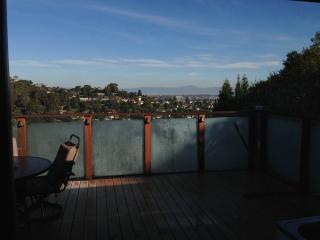 Treetop house in Silicon Valley San Carlos Hills - Santa Clara vacation rentals