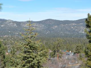 Amazing View Retreat at Big Bear Lake - Big Bear Lake vacation rentals