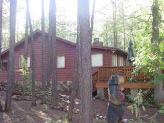 Enjoy the Tall Pines from the Large Deck - Lakeside vacation rentals