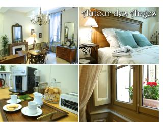Very charming apartment in Avignon, Provence - Avignon vacation rentals
