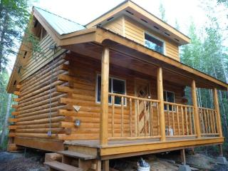 Cosy Character Log Cabin in a Forest Setting - Alaska vacation rentals