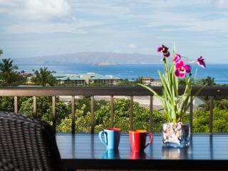 Ekolu 2/2 - PANORAMIC OCEANVIEW!  New Low Rate! - Wailea vacation rentals