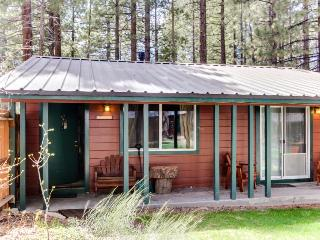 Pet-friendly cabin w/ hot tub; fireplace; fenced grounds - South Lake Tahoe vacation rentals