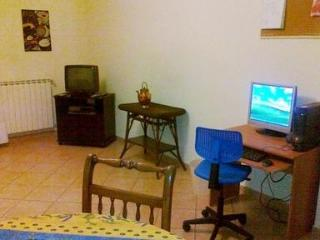 Panoramic for Family Near Florence - Florence vacation rentals
