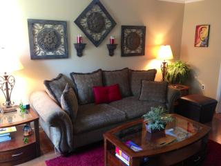 Beautiful 3 bedroom 2 bath city condo - Somerville vacation rentals