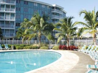 Tropical 1/1 Private Condo, 4 mi. to beaches! - Saint Petersburg vacation rentals