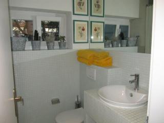 Single room - Valais vacation rentals