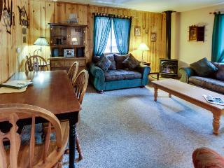 Cabin w/ hot tub; pet friendly; fenced grounds; room for 4 - South Lake Tahoe vacation rentals