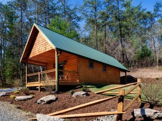 Laurel Mountain Retreat - Red Bird - Weaverville vacation rentals