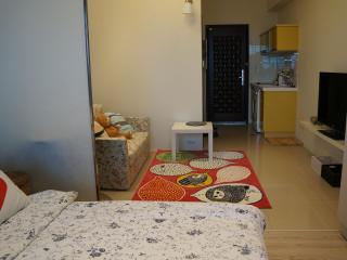 ITaiwan ~  Sweet home in Taiwan walk within 1 minu - Taipei vacation rentals