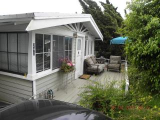 Laguna Beach Vintage Cottage two blocks from Beaut - Laguna Beach vacation rentals