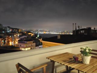 Flat w XL Terrace+Bosphorus View !! - Istanbul vacation rentals