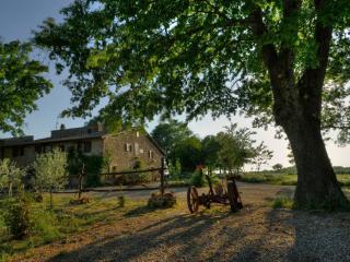 Organic Farm Sant'Egle - Sorano vacation rentals