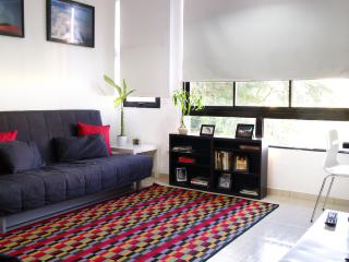 1 bedroom apartment in the  Downtown Santo Domingo - Santo Domingo vacation rentals