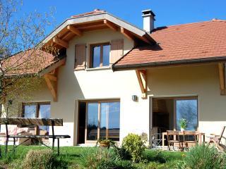 location entre lac et montagne proximité d'annecy - Veyrier-Du-Lac vacation rentals