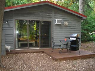 Charming Studio Cottage -  Alden, Mi - Northwest Michigan vacation rentals