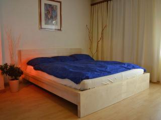 Zurlinden Studio Apartment - Zurich Region vacation rentals