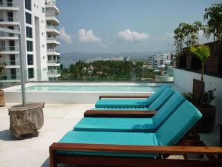 Penthouse Terra  in Nuevo Vallarta beach side. - Puerto Vallarta vacation rentals
