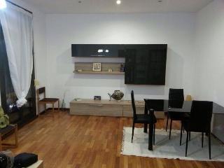3bedrooms Plaza Espanya - Barcelona vacation rentals