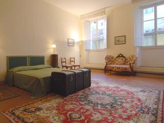 Federighi Apartment - 190 sqm! - Florence vacation rentals