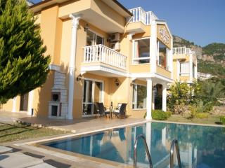 Dream Holiday Villa (3), Alanya, Turkey - Turkish Mediterranean Coast vacation rentals