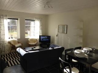 Nice studio close   to  Stockholm - Stockholm County vacation rentals
