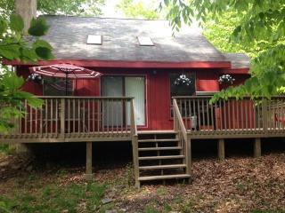 Comfortable Vacation Home With Fireplace! Close To All Amenities! - Tobyhanna vacation rentals