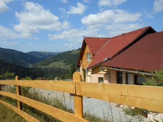 Explore Apuseni Mountains and Transylvania-Romania - Campeni vacation rentals