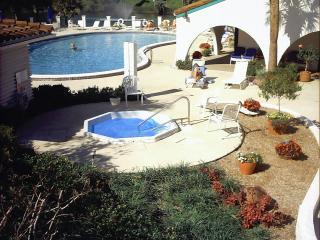 Condo on Lake in Sebring - Lake Placid vacation rentals
