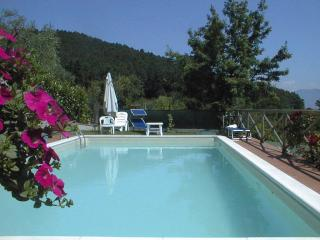 Beatiful villa with lovely gardens and pool. - Favaro vacation rentals