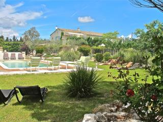 Heart of Provence, St Remy Vacation Home with Fireplace, Grill, Pool - Bouches-du-Rhone vacation rentals