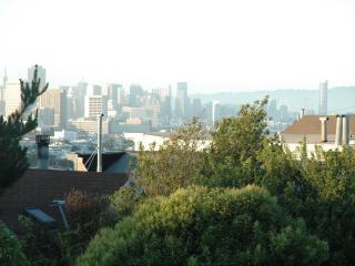 3BR-Noe/Castro-Views, Modern Living - San Francisco vacation rentals