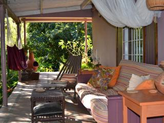 Pine Cottage For Rent- Boquete Mountains Panama - Boquete vacation rentals